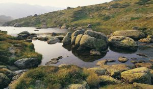 Kosciuszko-National-Park